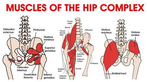 hip flexor pain dancer
