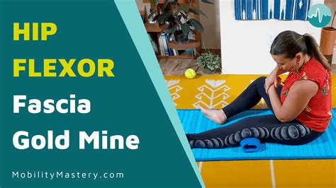 hip flexor pull injury synonym and antonym finder