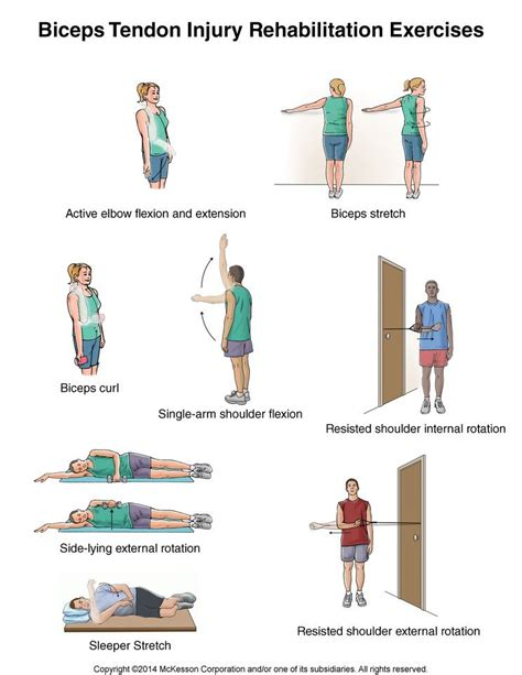 hip flexor rehabilitation protocol biceps tenodesis