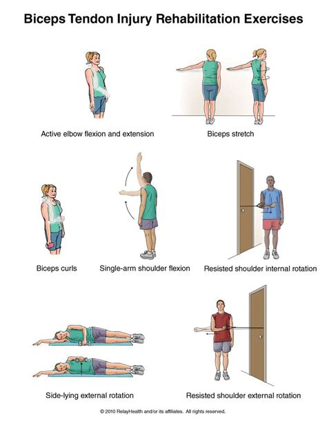 hip flexor rehabilitation protocol biceps tenodesis protocol