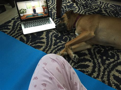 hip flexor stretches yoga youtube with adrienne 17th anniversary