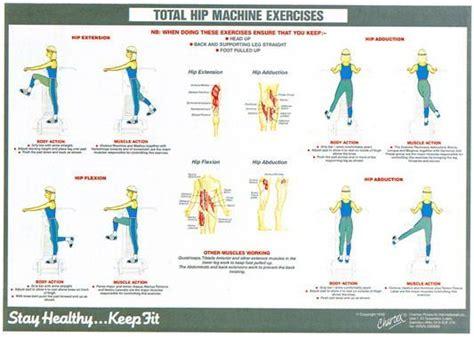 hip flexor stretching program elderly instruments coupon