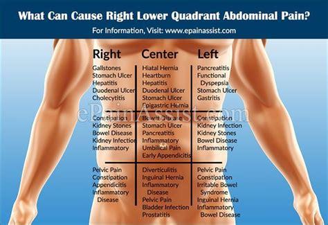 hip flexor tear near abdomen anatomy quadrants organs