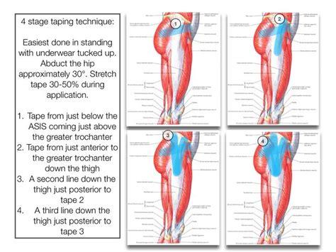 hip flexor tendon location on the humerus has an olecranon bursa