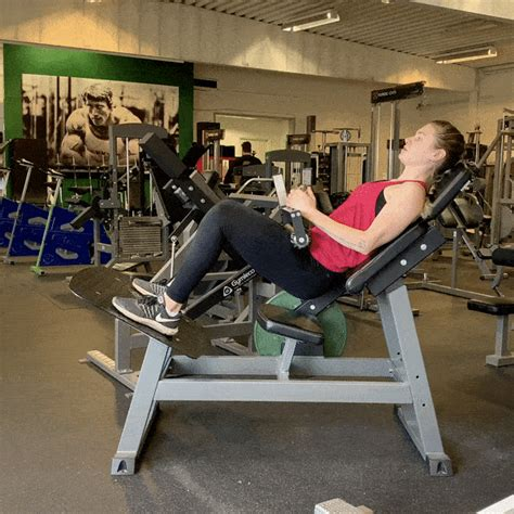hip flexors and hip extensors machine liker facebook