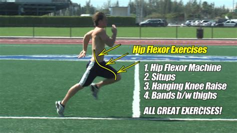 hip flexors exercises for hurdles synonyms for great importance
