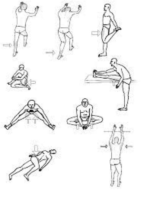 hip flexors pnf stretching examples for simile