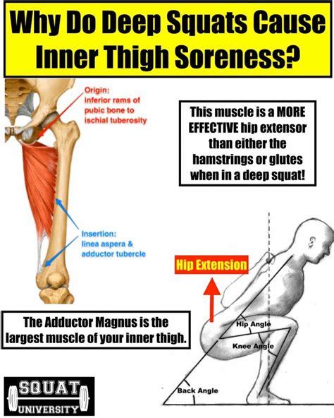hip flexors sore after squats meme chaps ralph