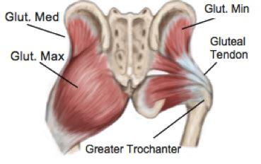 hip gluteus minimus insertional tendinosis gluteal region