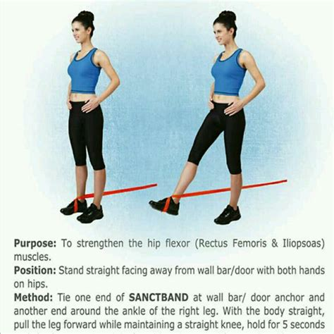 hip muscle exercises movements bandcamp