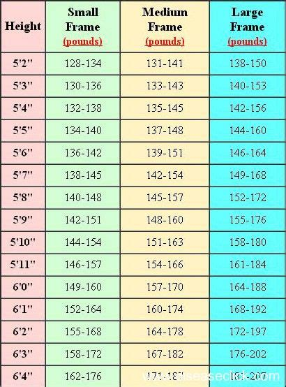 hip muscle male chart weights