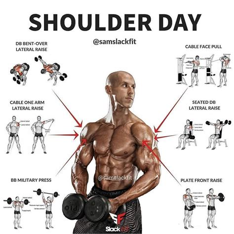 hip muscles exercises for bigger shoulders and arms