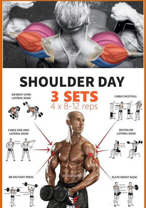 hip muscles exercises for bigger shoulders with own body