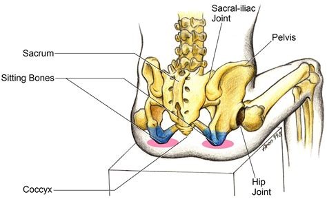 hip pain when going from sitting to standing position