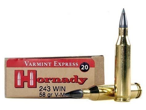 Ammunition Hornady 243 Ammunition.