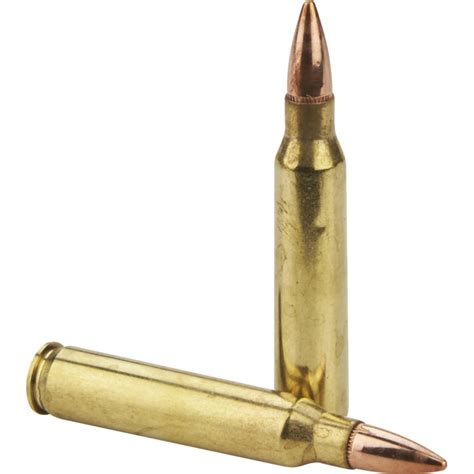 Ammunition Hornady Centerfire Rifle Ammunition.