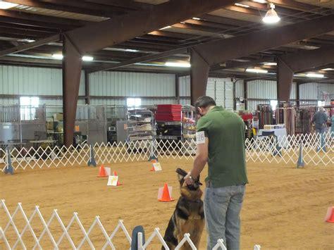 Houston Dog Training Club