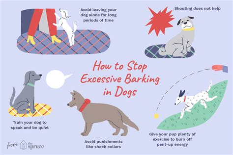 how to stop a dog from barking so much