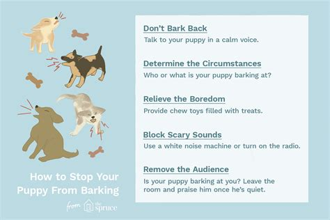 how to stop your puppy from barking