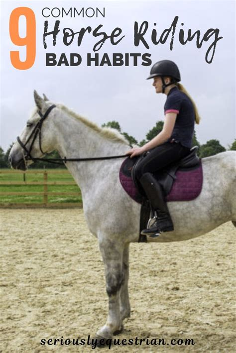 How To Train A Horse With Bad Habits. - The Horse Forum.