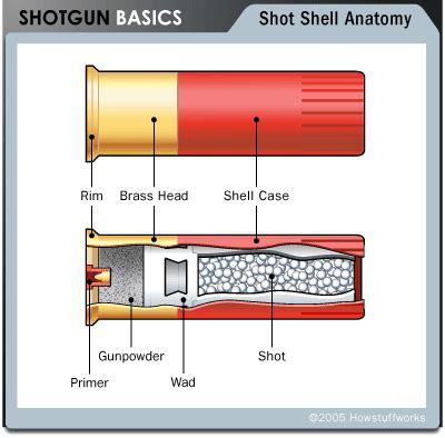 Shotgun-Question How Does A Shotgun Bullet Work.