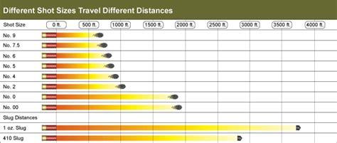 Shotgun-Question How Far Can Shotgun Pellets Travel.