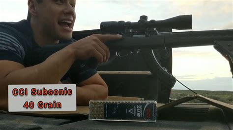 Ruger-Question How Far Is A Ruger 10-22 Accurate