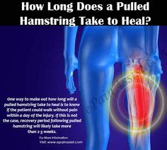 how long does it take to heal hip flexor injury wrap on horses