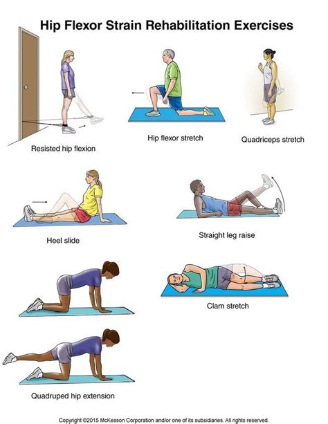 how to exercise your hip flexor muscles diagram