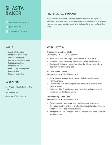 resume template professional resume format examples resume examples resume for appealing free professional resume - Free Professional Cv Template