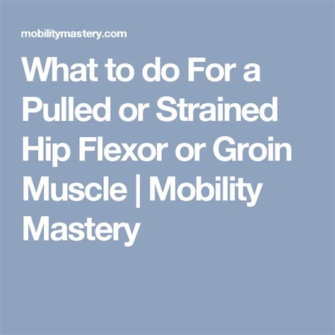 how to heal a hip flexor injury fast times agility dogs