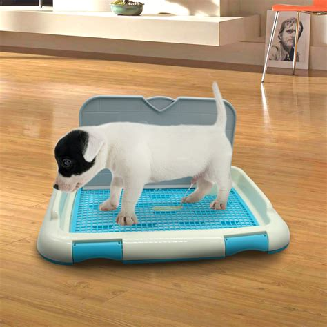 How Do Puppy Pads Train Dogs