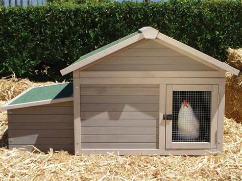How To Build Chicken Coops For Dummies