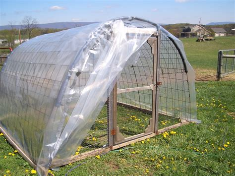 How To Make A Chicken Hoop House
