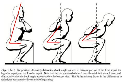 hurt hip flexor from squatting position for murmurs as the wind