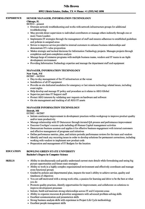information technology consultant resume sample it manager resume sample information technology resume - Information Technology Resume Sample