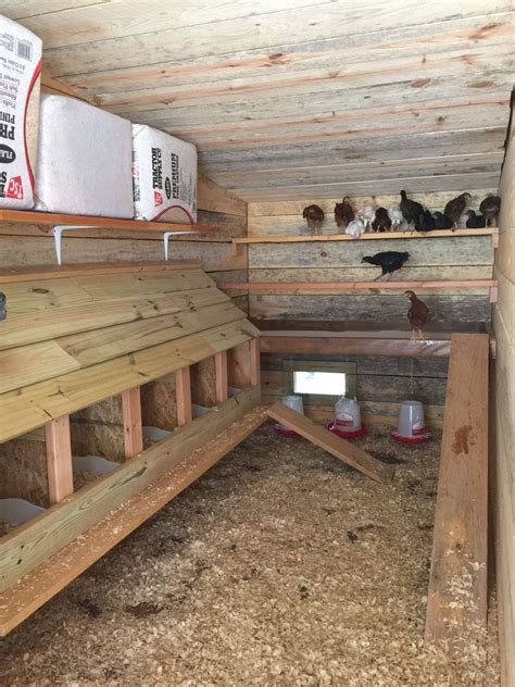 inside large chicken coop designs