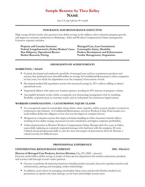 commercial insurance underwriter resume sample insurance resume free sample resumes - Underwriter Resume Sample