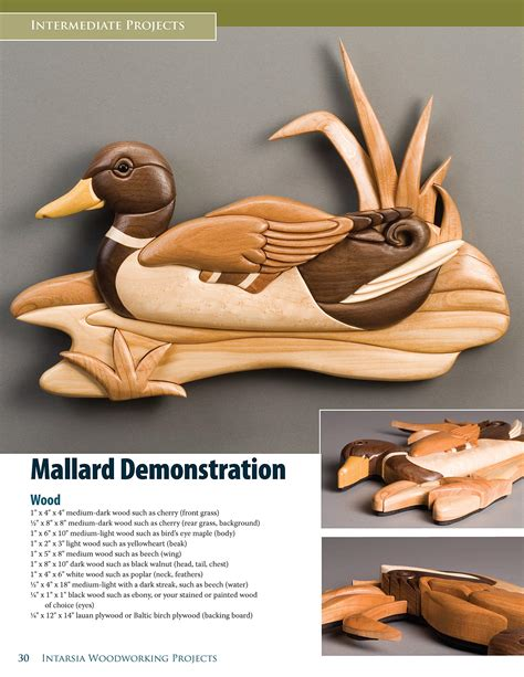 intarsia woodworking projects kathy wise