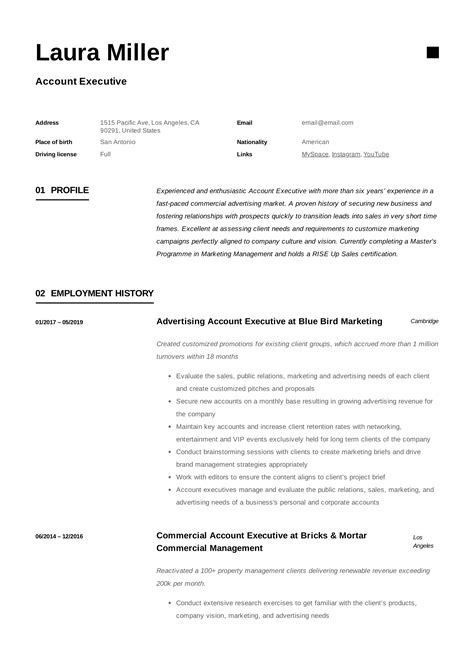 it account manager resume example account manager resume example