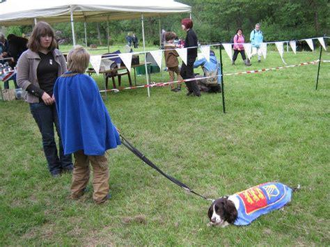 Jublea Dog Training