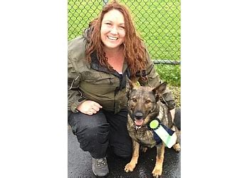 k-9 best behaviour dog training burnaby bc