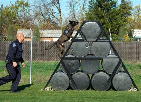 k9 dog training accessories