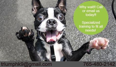 K9 Dog Training Houston Tx
