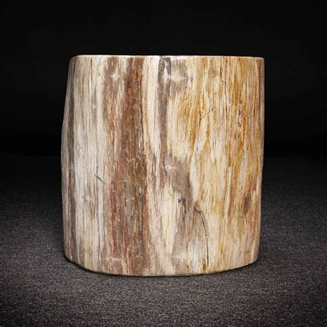 Kayden Petrified Wood Decorative Stool