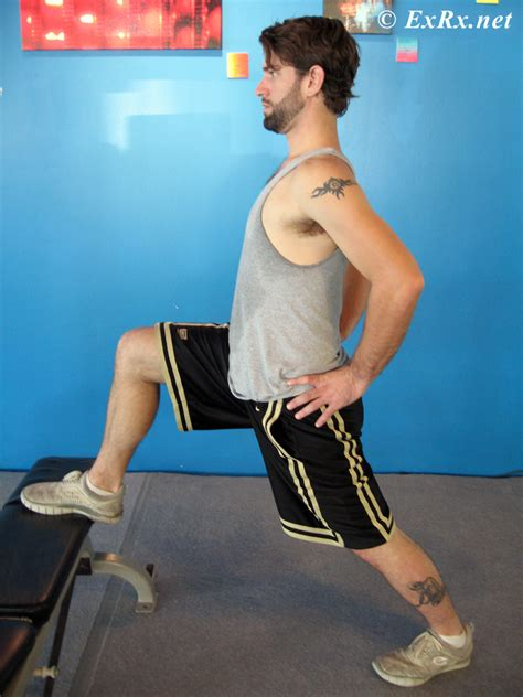 kneeling hip flexor stretch foot elevated barbell row upright