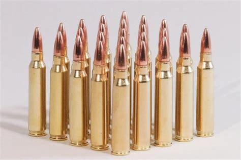 Ammunition Lead Free 5.56 Ammunition.