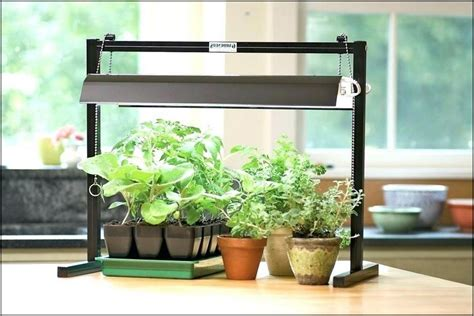 lightweight planters for inside of home
