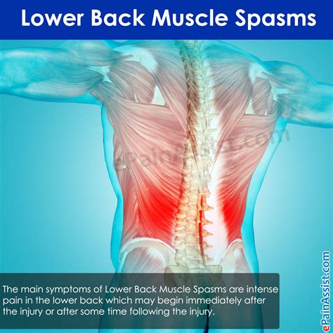 lower back pain and muscle spasms