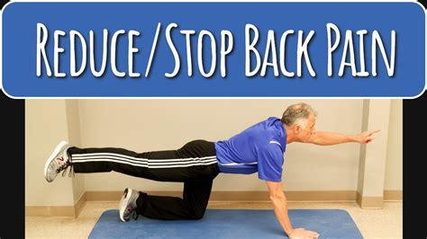lower back pain exercises and stretches news and observer